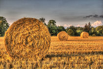 The Straw Bales by David Pyatt