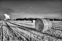 Summers evening farm by David Pyatt