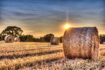 Summers Evening Farm von David Pyatt