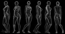 """X-Ray Female"" (Black Background) by Marco Romero"