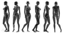 """X-Ray Female"" (White Background) by Marco Romero"
