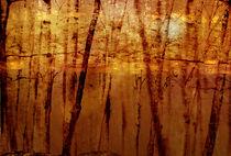Golden forest by Jessica Valner