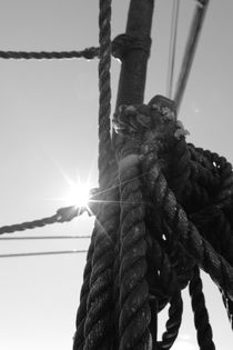 Bright sun and coiled rope by Intensivelight Panorama-Edition