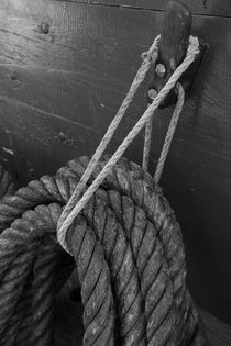 Ropes fastened on a belaying pin by Intensivelight Panorama-Edition