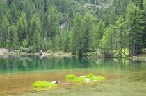 Puntleider See von Michael Fink