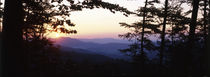 Bavarian forest sunset von Intensivelight Panorama-Edition