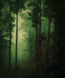 Fog's mist by Jessica Valner