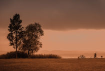 two trees, two bike, two people, one love by Joseph Borsi