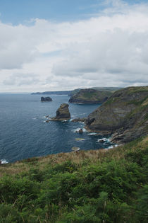 Long Island, Bossiney, Cornwall by dresdner