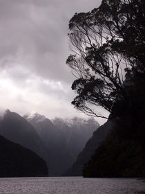 Doubtful Sound, New Zealand von 2eyes4beauty