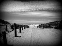 Dp-newzealand-beach1