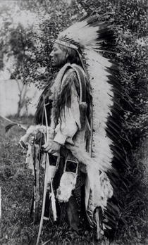 White Wolf, a Comanche Chief, c.1891-98 (b/w photo)  von Bridgeman Art