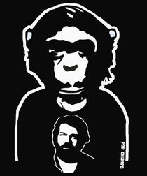 Bud Spencer by POP CHIMPS von Marisa Rosato