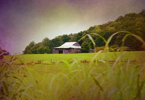 Purple Barn by Kume Bryant
