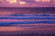the sea von whoiamann