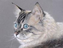 Katzenportrait by Simone Hofmann