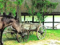 Auf dem Lande -In the country (rural) von Wolfgang Pfensig