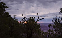 Orchestrating A Sunset At The Grand Canyon von John Bailey