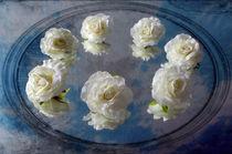 Heavenly Roses by Randi Grace Nilsberg