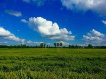 Wolken über den Feldern by megina-art