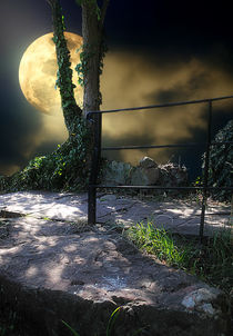 Walking in Moonlight von CHRISTINE LAKE
