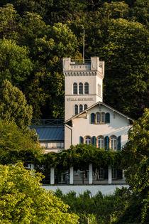 Villa Sachsen in Bingen von Erhard Hess