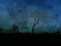 blue night von ursfoto
