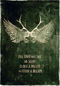 Wingsdestroyed2v-c-sybillesterk