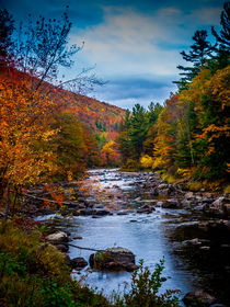 Autumn River Vertical Format von Jim DeLillo