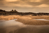 Mumbles lighthouse von Leighton Collins
