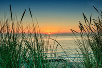 Dreamy sunset von Mike Santis