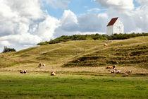 Danish landscape by Mike Santis
