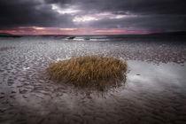Machynys bay, Llanelli by Leighton Collins