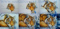 Tiger - step by step  von Marzena Schulz