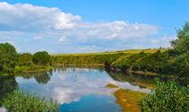 Summer landscape with river and forest  von larisa-koshkina
