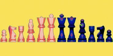 Checkmate-diaries1