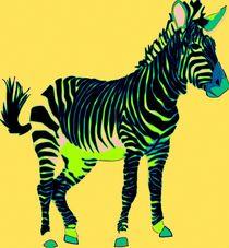 Zebra Pop Art by Florian Rodarte