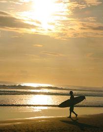 Surfer in Paradise by nicolas lesueur