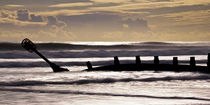 Beach Groynes by David Pringle