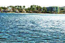 Alabama Coast by Dan Richards