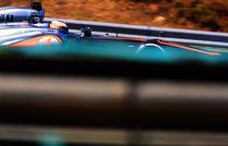 Formula 1 by Srdjan Petrovic