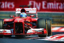 Formula 1 Fernando Alonso von Srdjan Petrovic