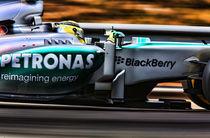 Formula 1 Nico Rosberg von Srdjan Petrovic