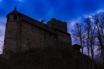 Castle Gosting  von robert-boss