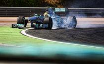 Formula 1 Lewis Hamilton  by Srdjan Petrovic
