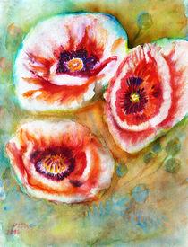 Türkische Mohnblumen by Irina Usova