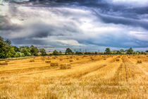 The Farm Vista by David Pyatt