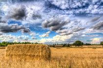 Summer Straw Bales by David Pyatt