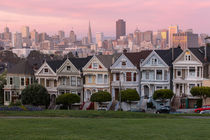 Painted Ladies von timbo210