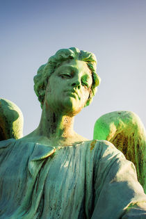 Memphis Elmwood Cemetery - Patinated Angel by Jon Woodhams